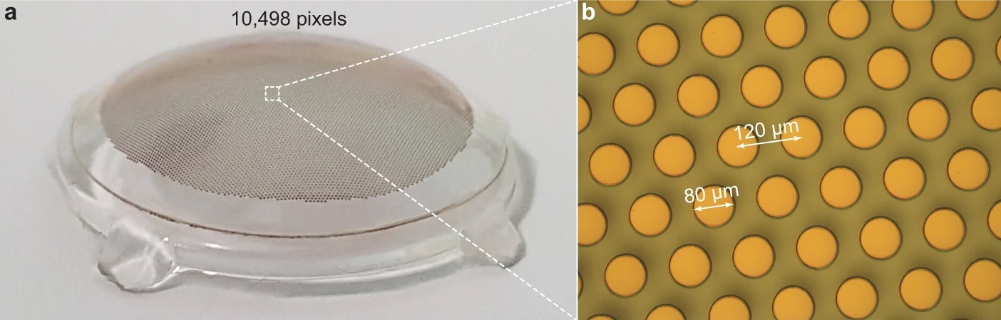 Image showing a close-up of the photovoltaic dots on the retinal implant, labeled as being about 80 microns across each.